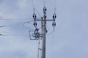 Prace budowlane i elektryczne 16